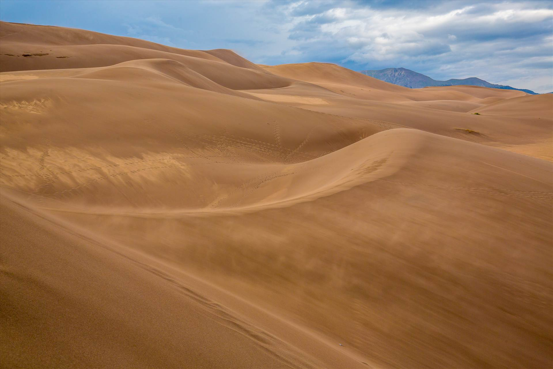 Great Sand Dunes 3 -  by D Scott Smith