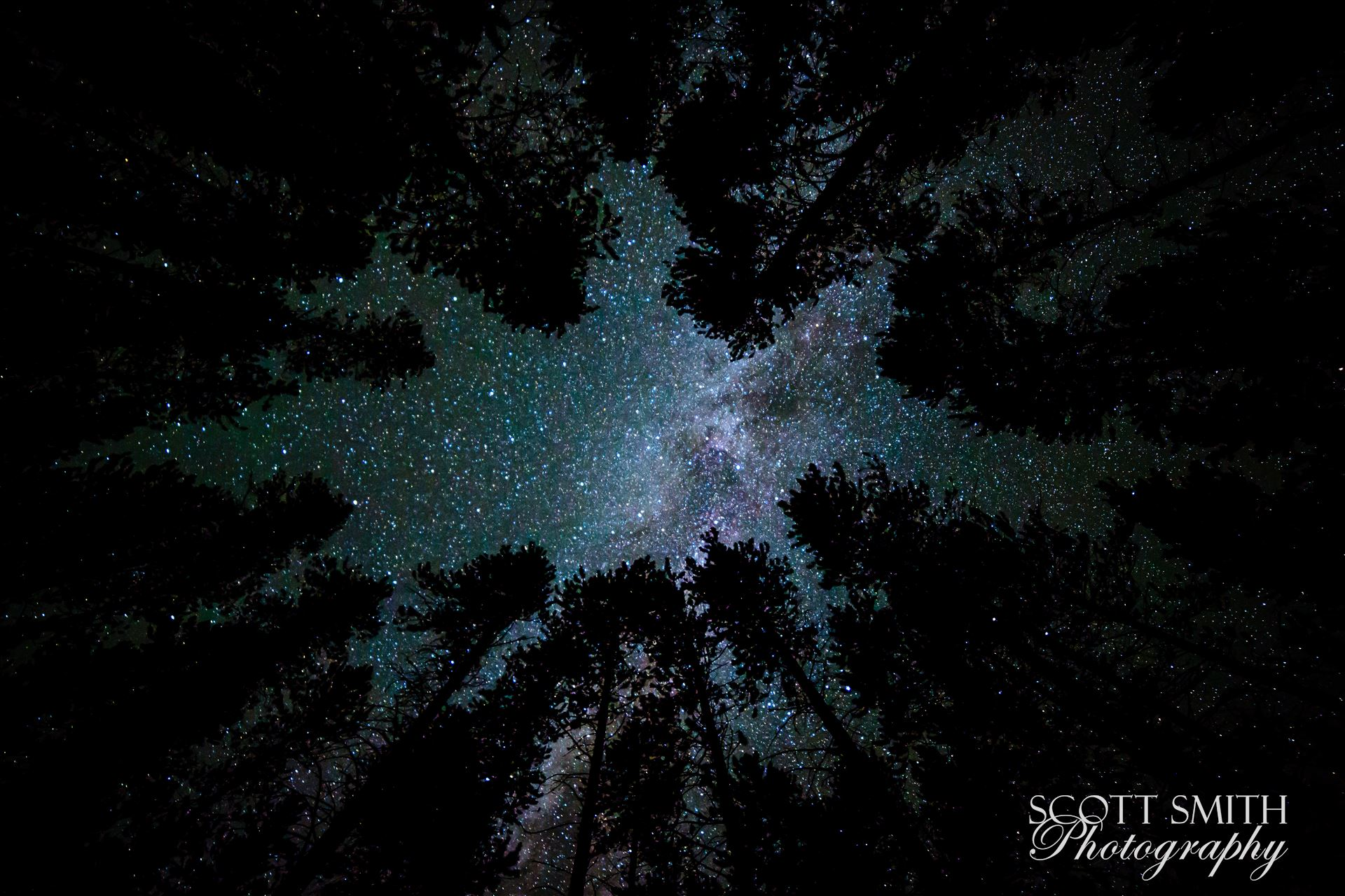 Camping with a View - Landscape - A beautiful view of the milky way from our campsite at Turquoise Lake, Leadville Colorado, adjusted for portrait view. by D Scott Smith