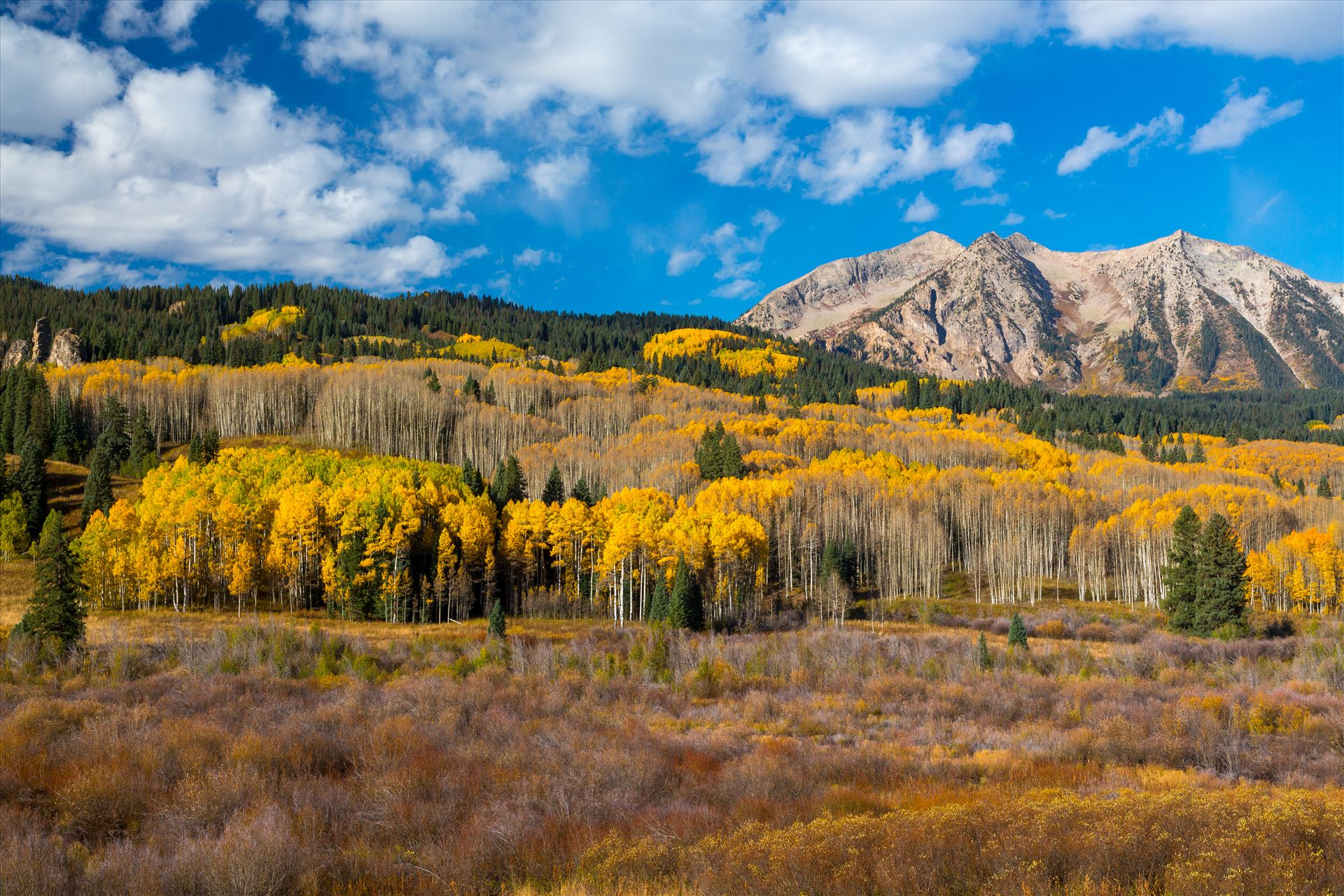 East Beckwith Mountain - East Beckwith mountain surrounded by fall colors. Taken a few steps off Kebler Pass, Crested Butte, Colorado. by D Scott Smith