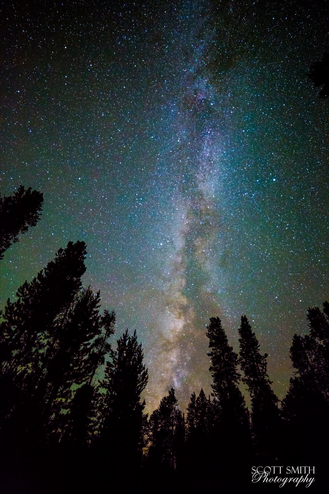 Leadville Starry Sky - Another beautiful view of the milky way from our campsite at Turquoise Lake, Leadville Colorado. by D Scott Smith