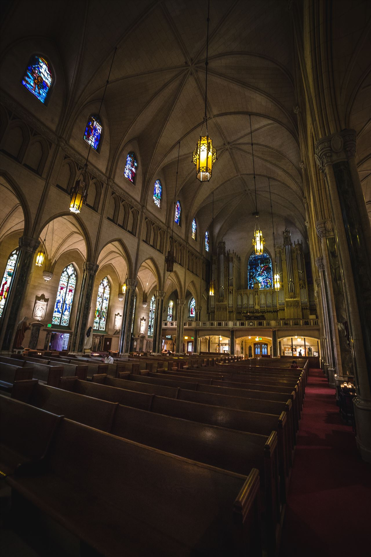 St. Patricks Cathedral 4 -  by D Scott Smith