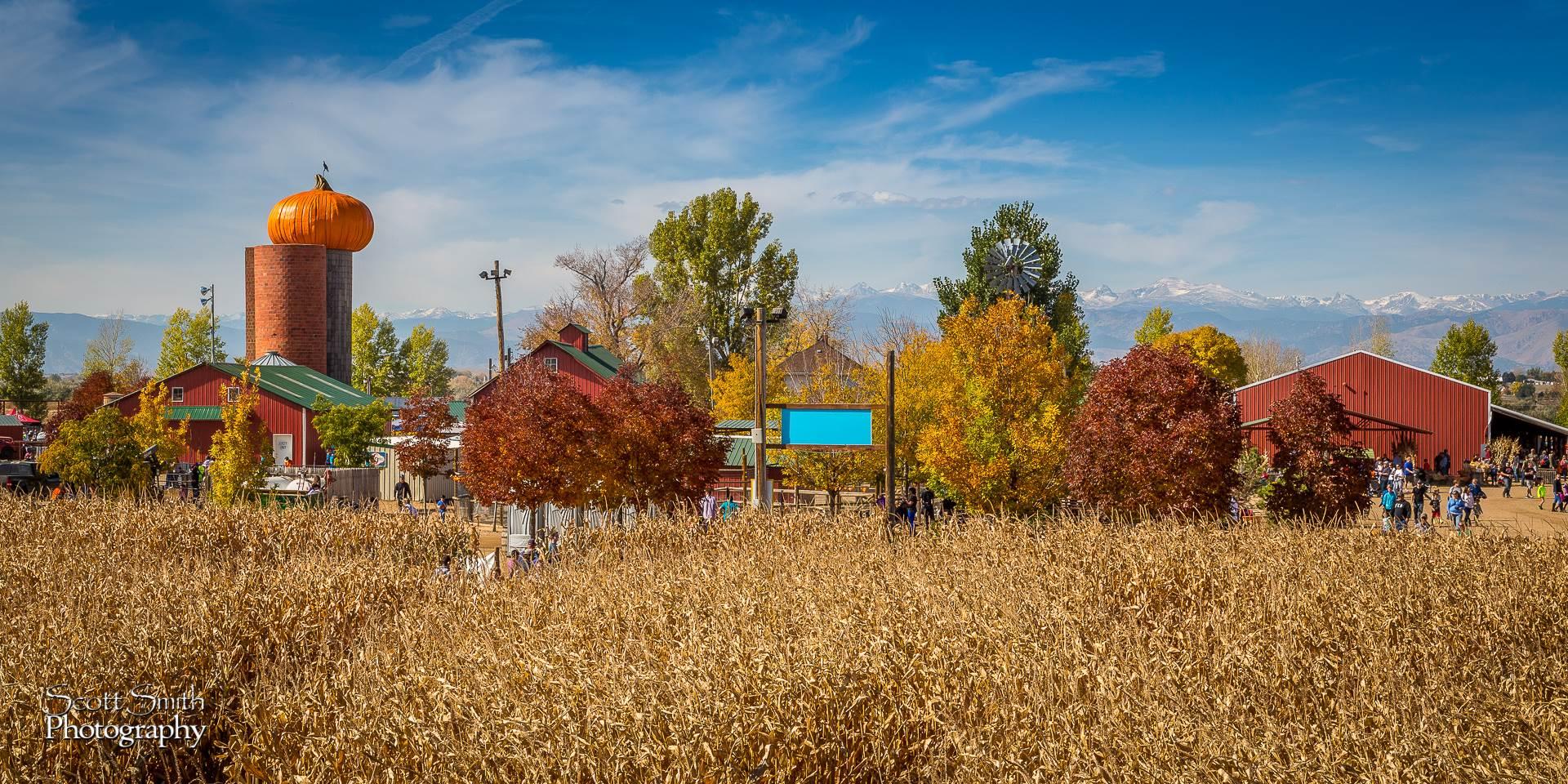 Farm - Anderson Farms, Erie Colorado. by D Scott Smith