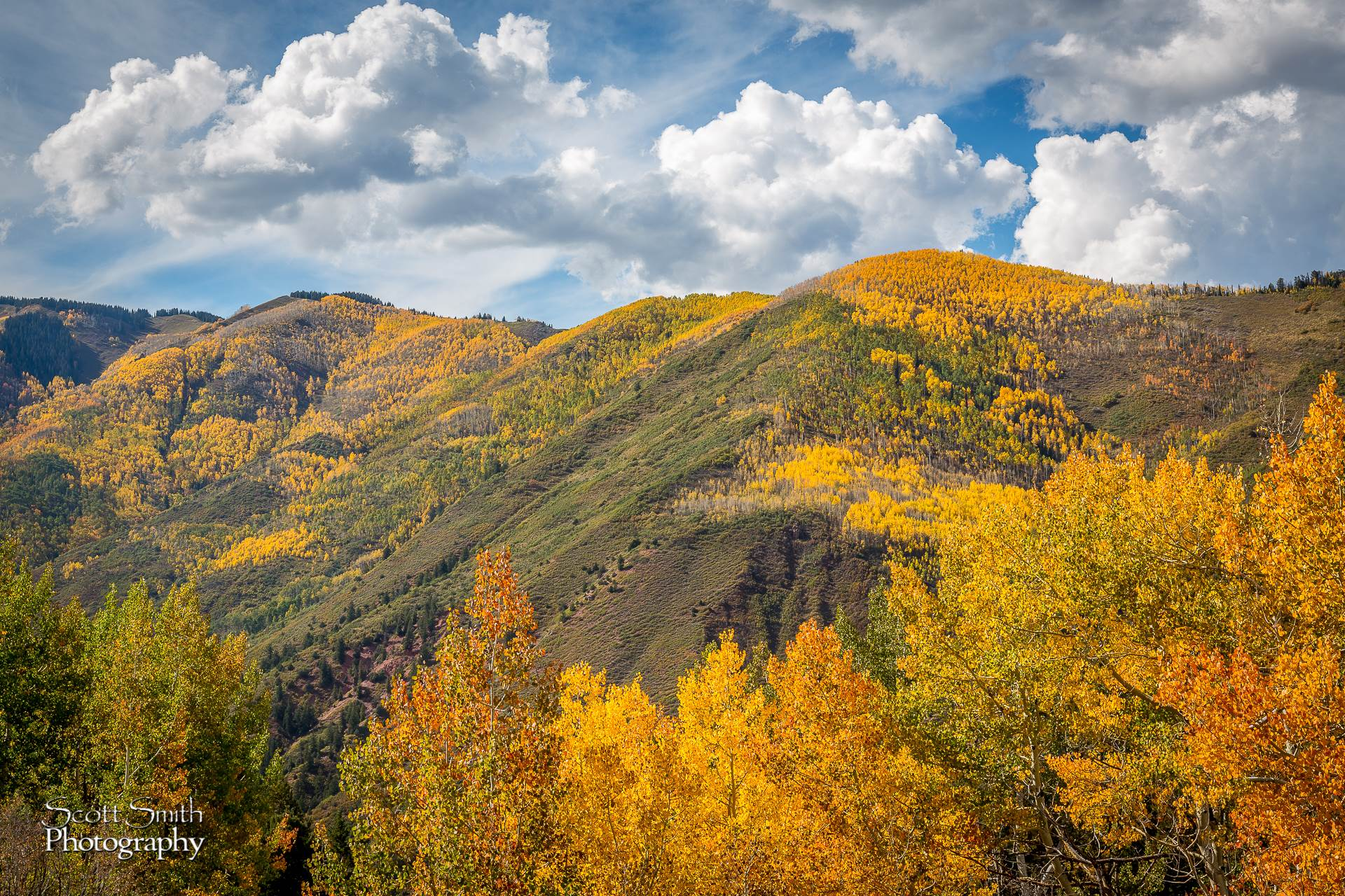 Snowmass Hillside No 4 -  by D Scott Smith