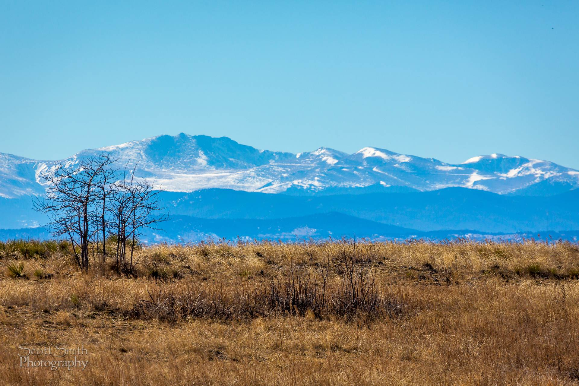 Front Range - The front range from the Rocky Mountain Arsenal Wildlife Refuge. by D Scott Smith