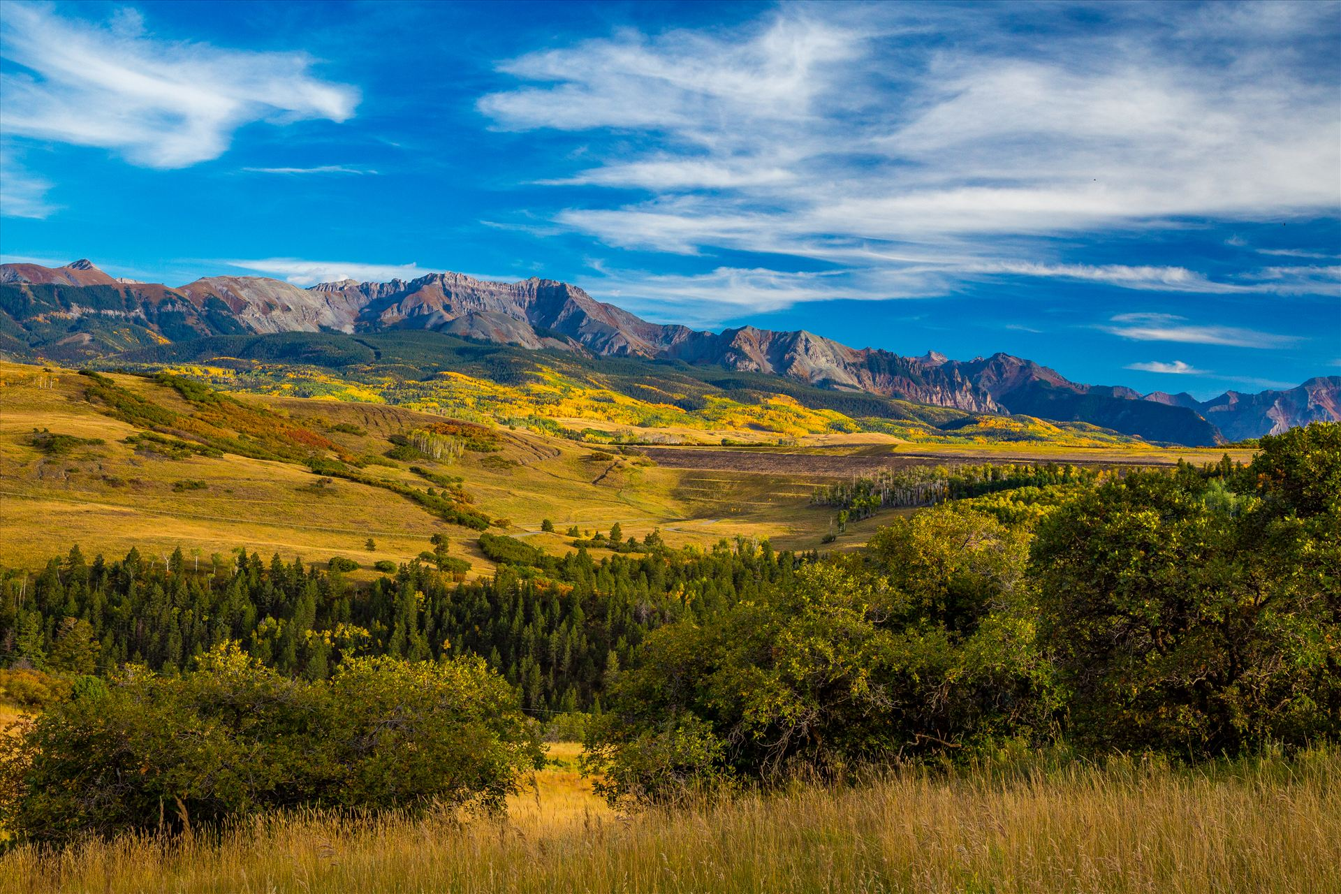 Last Dollar Road 2 - From Last Dollar Road looking towards the San Joquin Range, the area around Telluride explodes with fall colors. by D Scott Smith