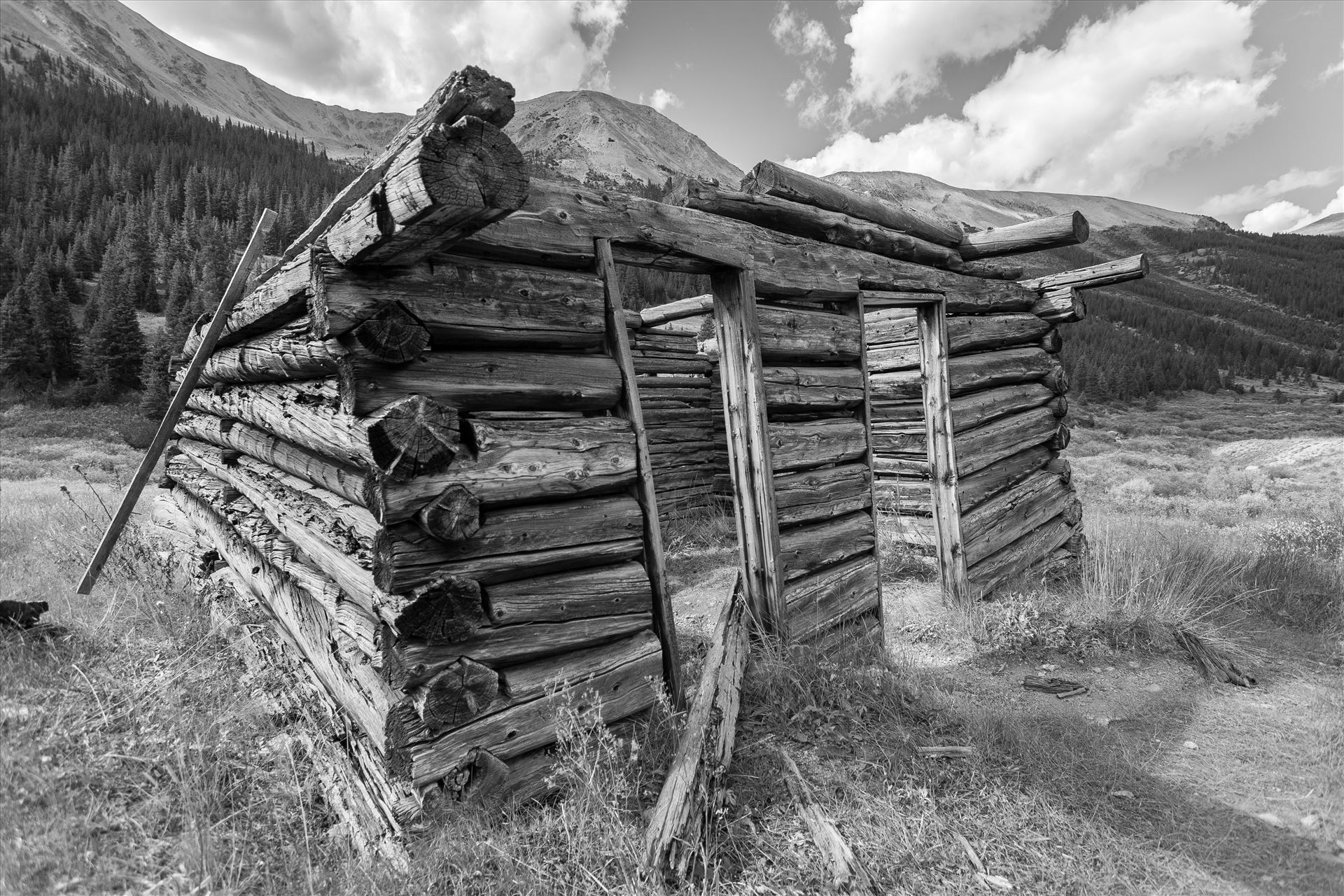 Ghosts of Independence Pass - A collapsing cabin in the ghost town of Independence, Colorado. by D Scott Smith