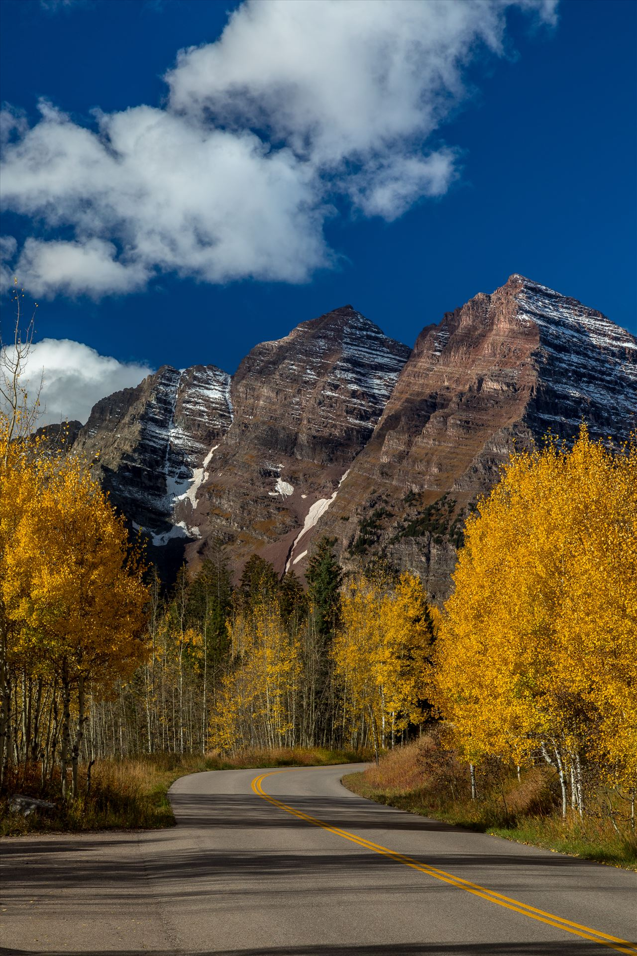 Fall in Aspen Snowmass Wilderness Area No 4 -  by D Scott Smith