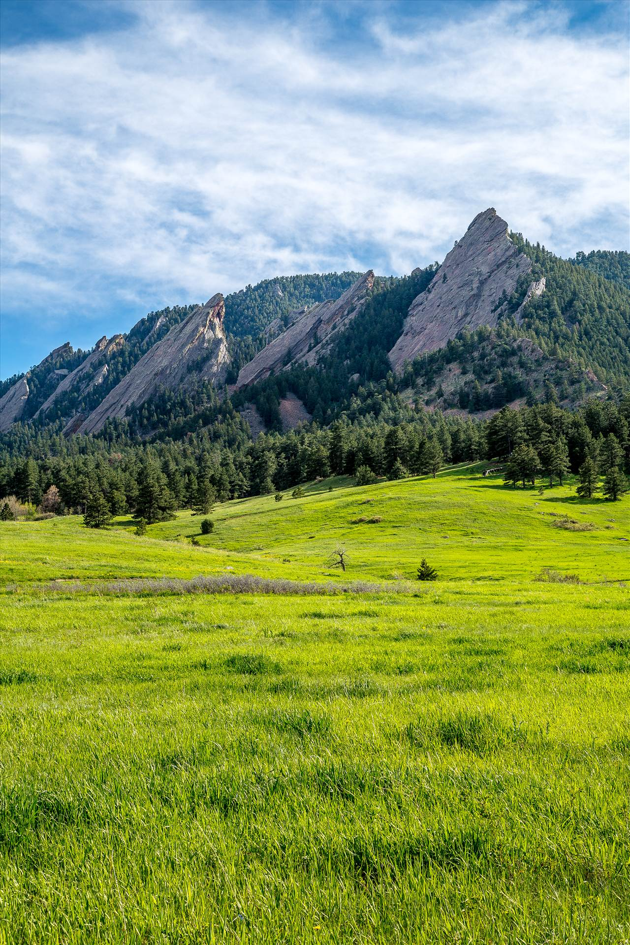 Flatirons - The Flatirons, taken near the National Atmospheric Research Laboratory in Boulder, CO. by D Scott Smith