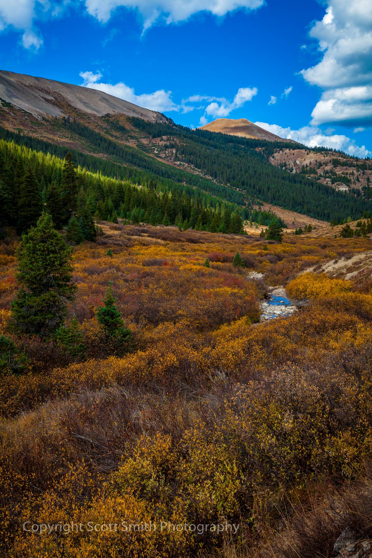 Independence Pass - The gorgeous view of the valley bordering the western half of Independence pass. by D Scott Smith