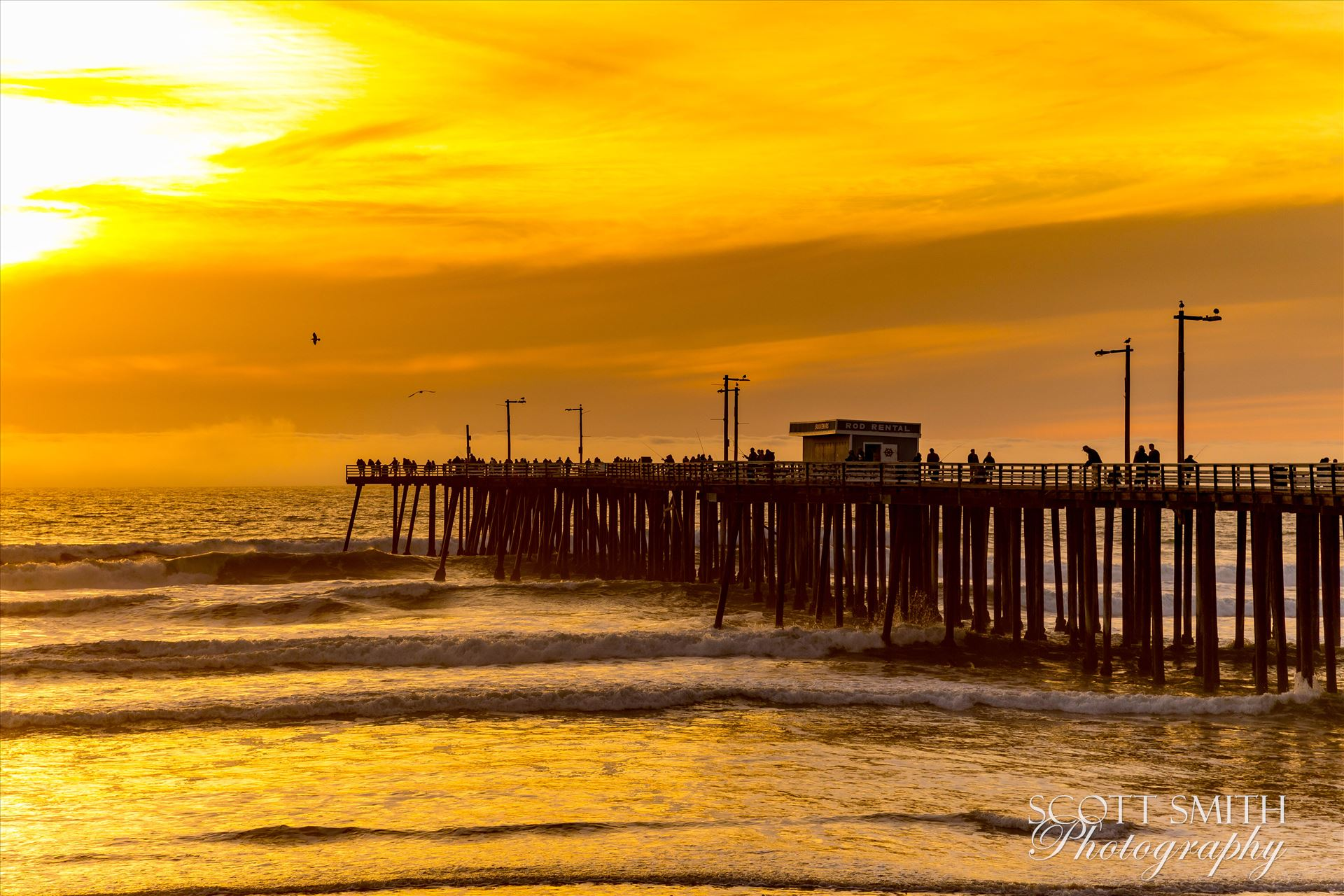 Sunset on the Pier -  by D Scott Smith