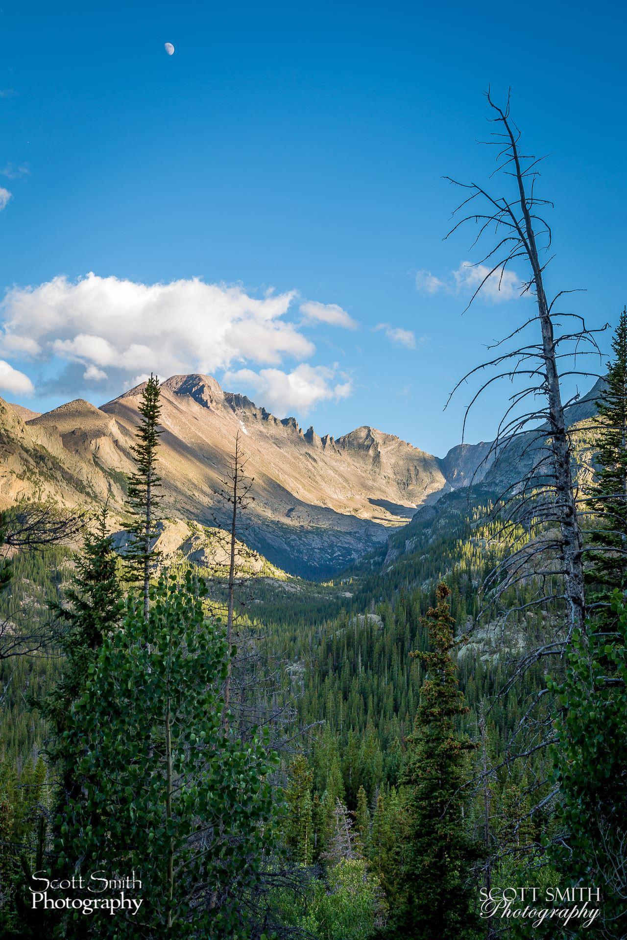 Bear Lake Trail 7 -  by D Scott Smith