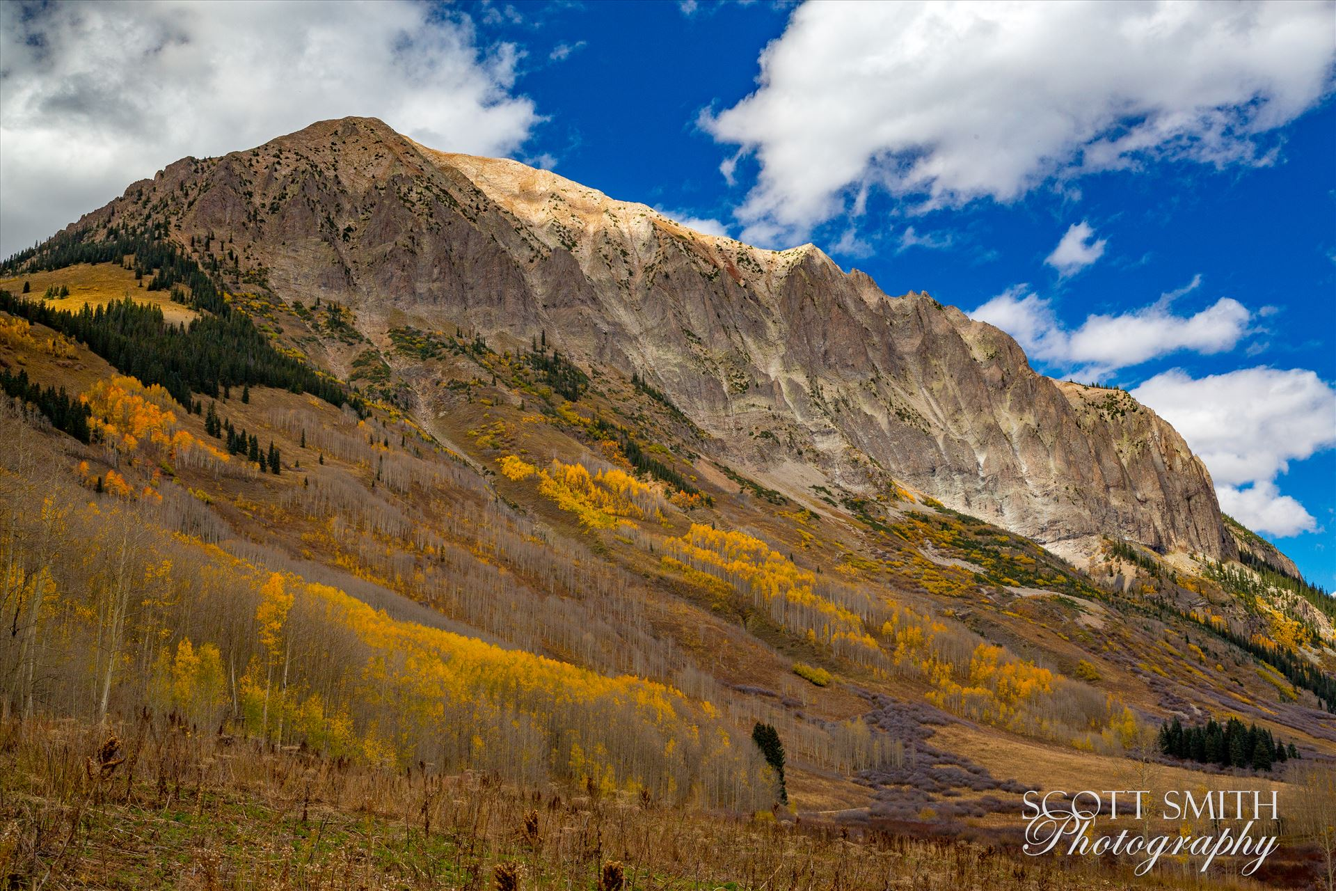 Gothic MountainFall colors on Gothic mountain, near Crested Butte Colorado.