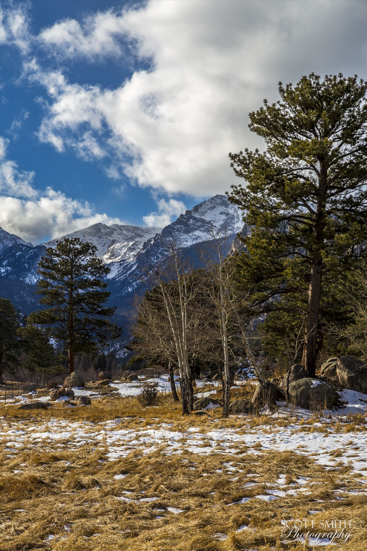 Winter at Bear Lake Road - Winter's begun, taken just off Bear Lake Road in the Rocky Mountain National Park. by D Scott Smith