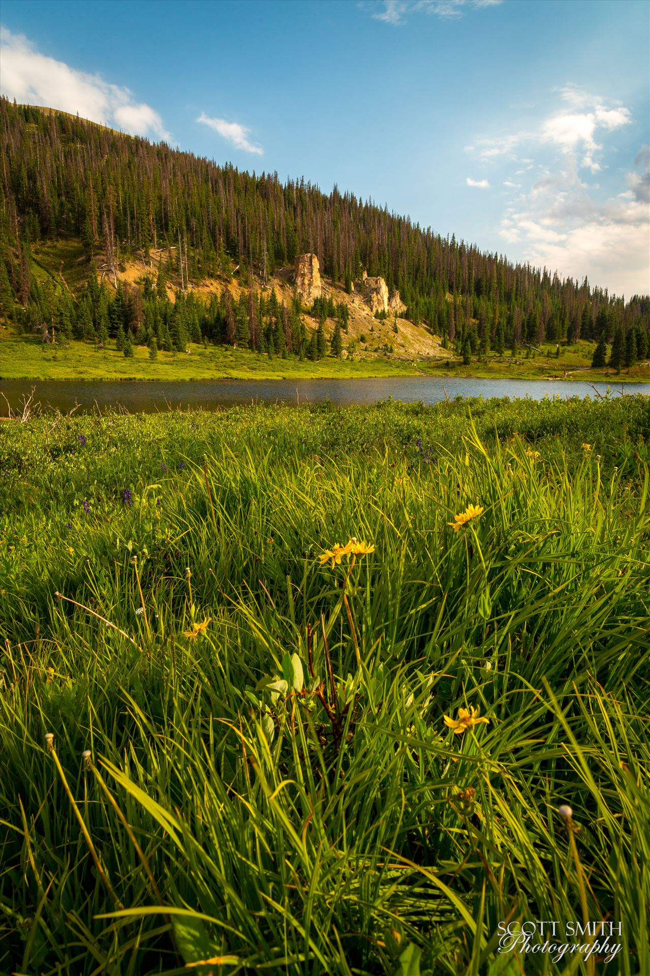 Poudre Lake - Evening sun lights the hills around Poudre Lake, on Trail Ridge Road. by D Scott Smith