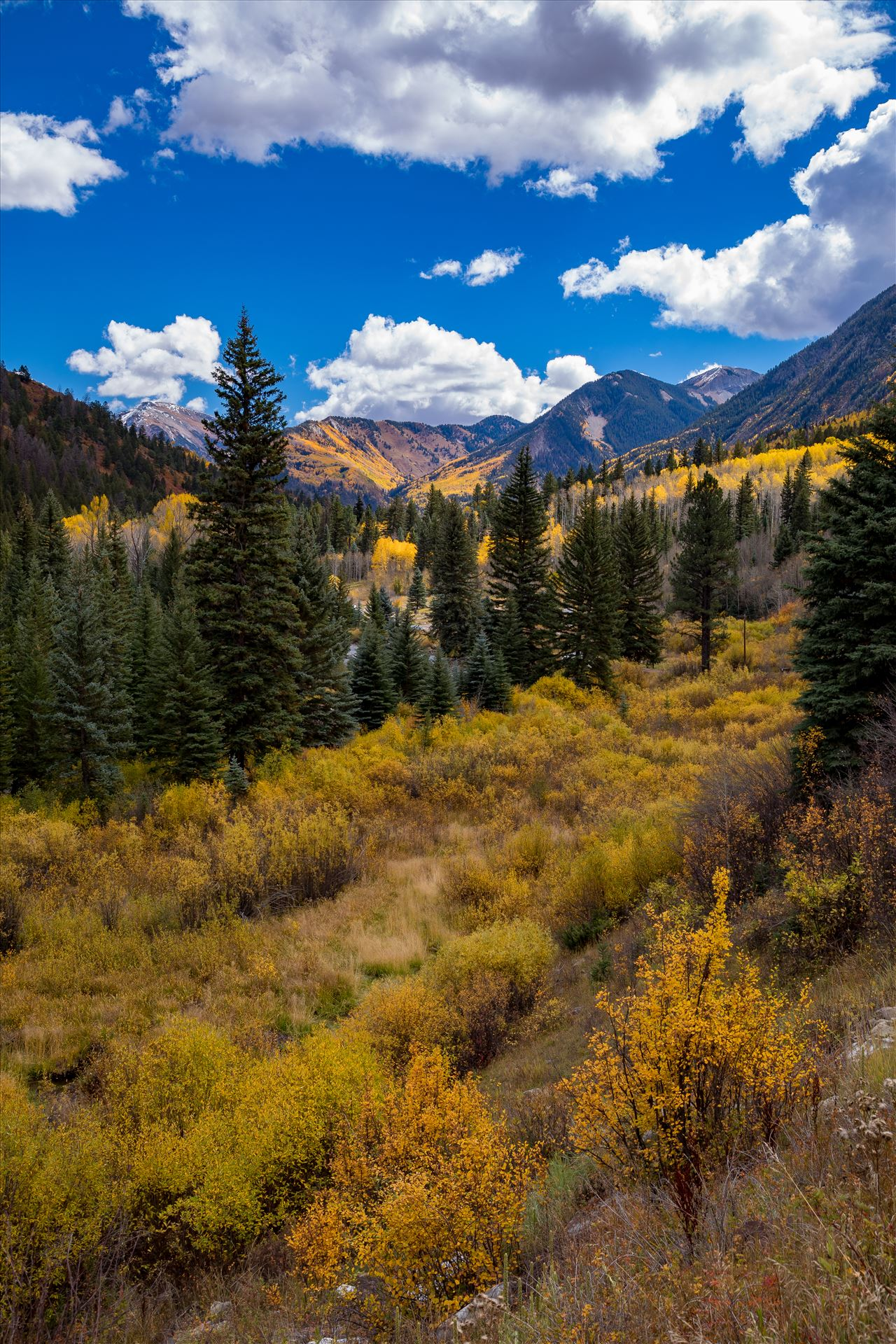 Road Number 3 - Outside of Marble, Colorado, the view from Road Number 3 in fall. by D Scott Smith