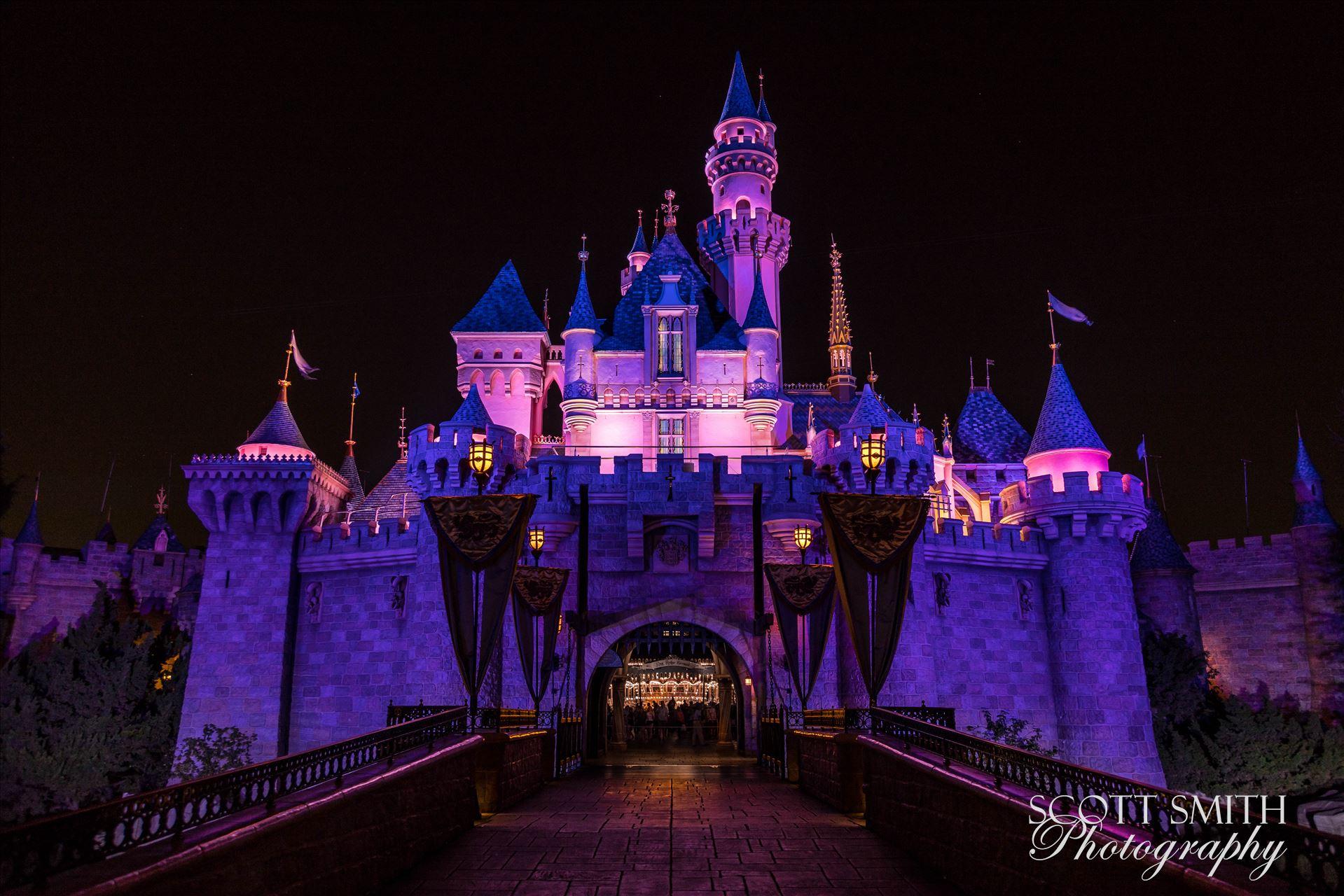 Princess Castle 1 -  by D Scott Smith