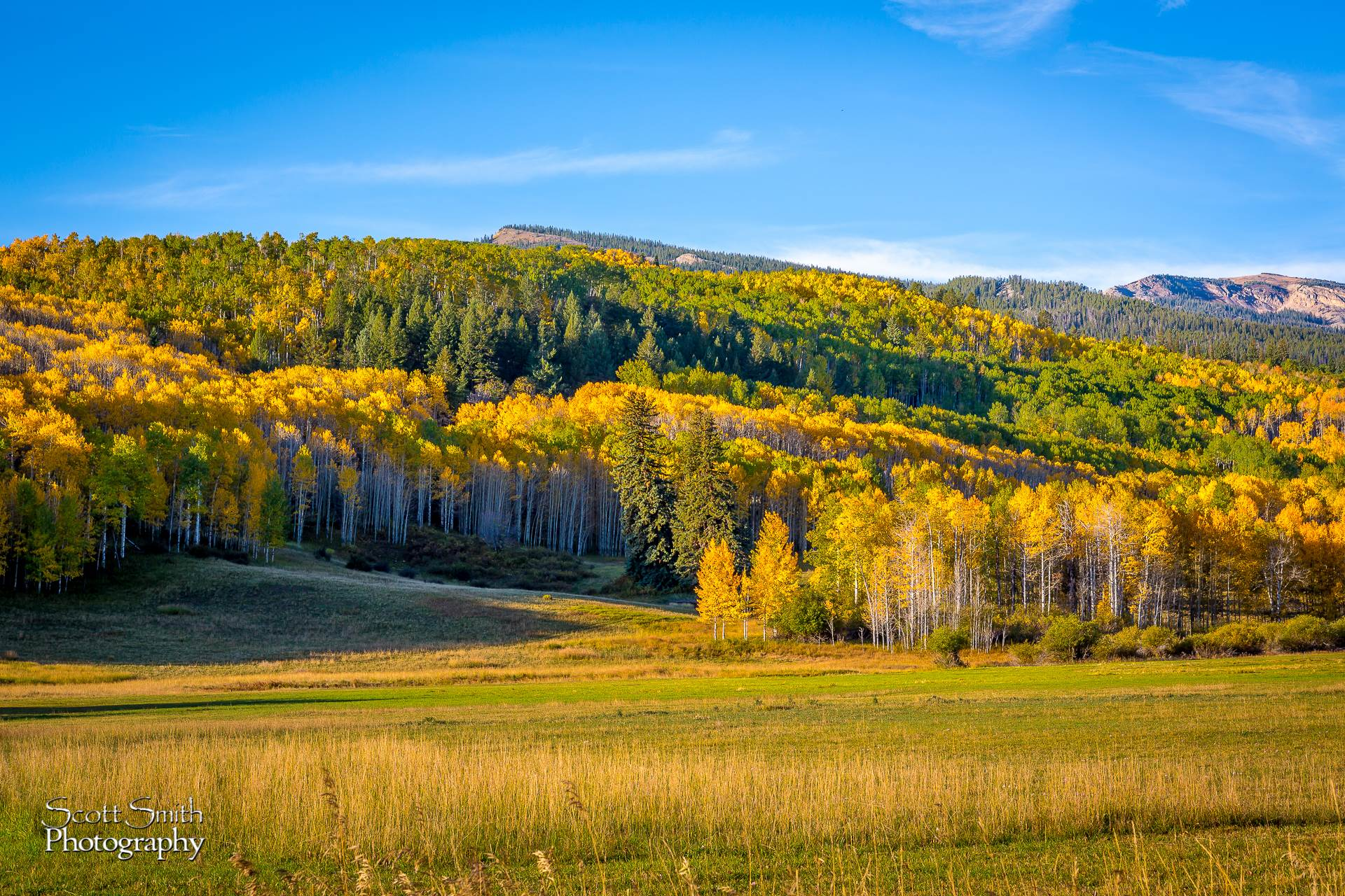 Snowmass Ranch - From Owl Creek road, outside Snowmass. by D Scott Smith