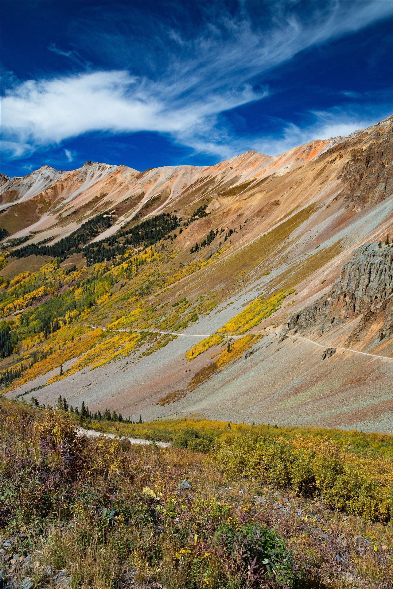 Ophir Pass 3 - Ophir Pass, between Ouray and Silverton Colorado in the fall. by D Scott Smith