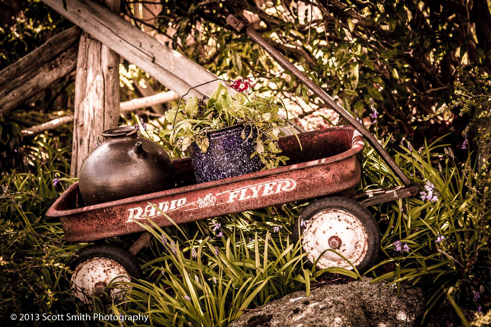 Old Timer - A vintage, decorated Radio Flyer in Langley, Washington. by D Scott Smith