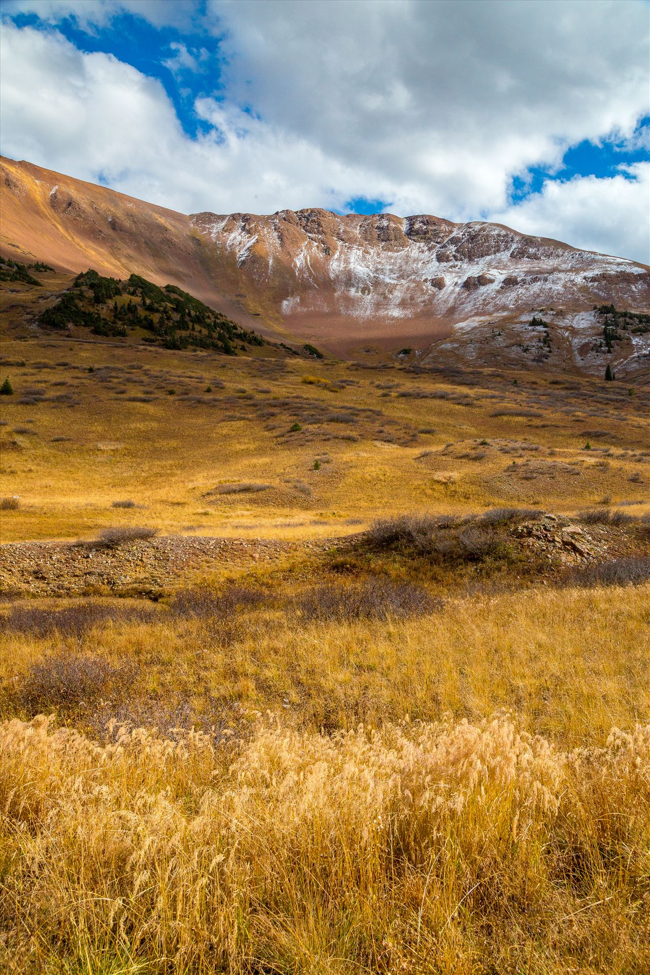 Snow and Grasses at Mount Baldy Wilderness - Snow and fall grasses on the peaks at the Mount Baldy Wilderness area, near the summit. Taken from Schofield Pass in Crested Butte, Colorado. by D Scott Smith