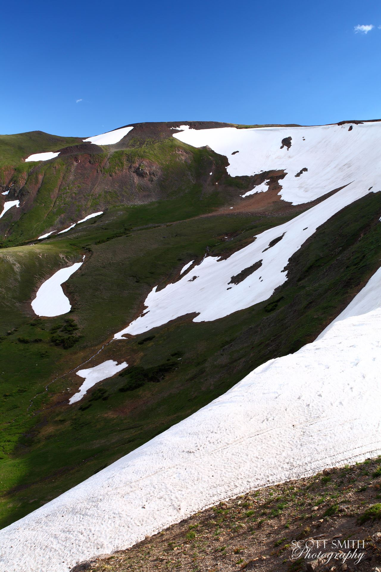Trail Ridge View 2 -  by D Scott Smith