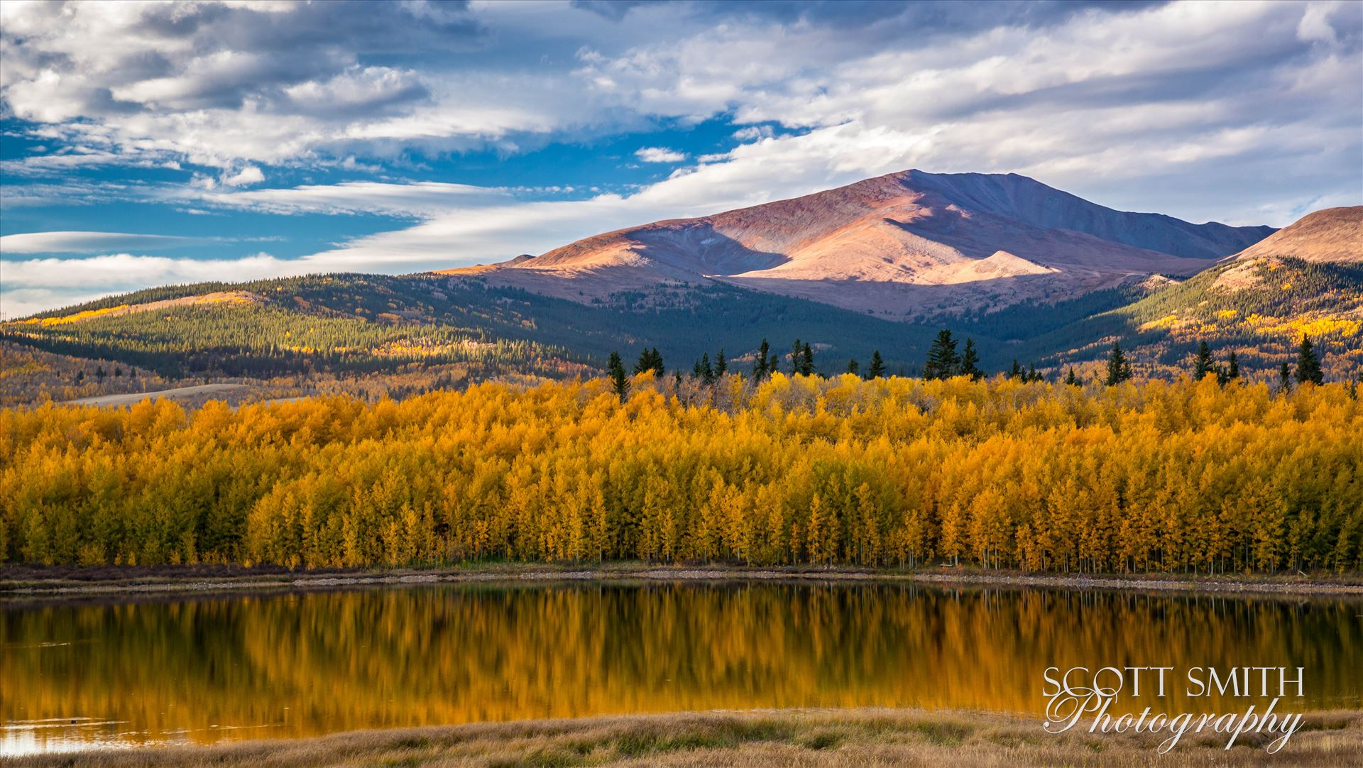 Reflecting Colorado Gold - A small lake between South Park and Fairplay, Colorado reflects the fall aspens as the sun sets on a beautiful weekend. by D Scott Smith