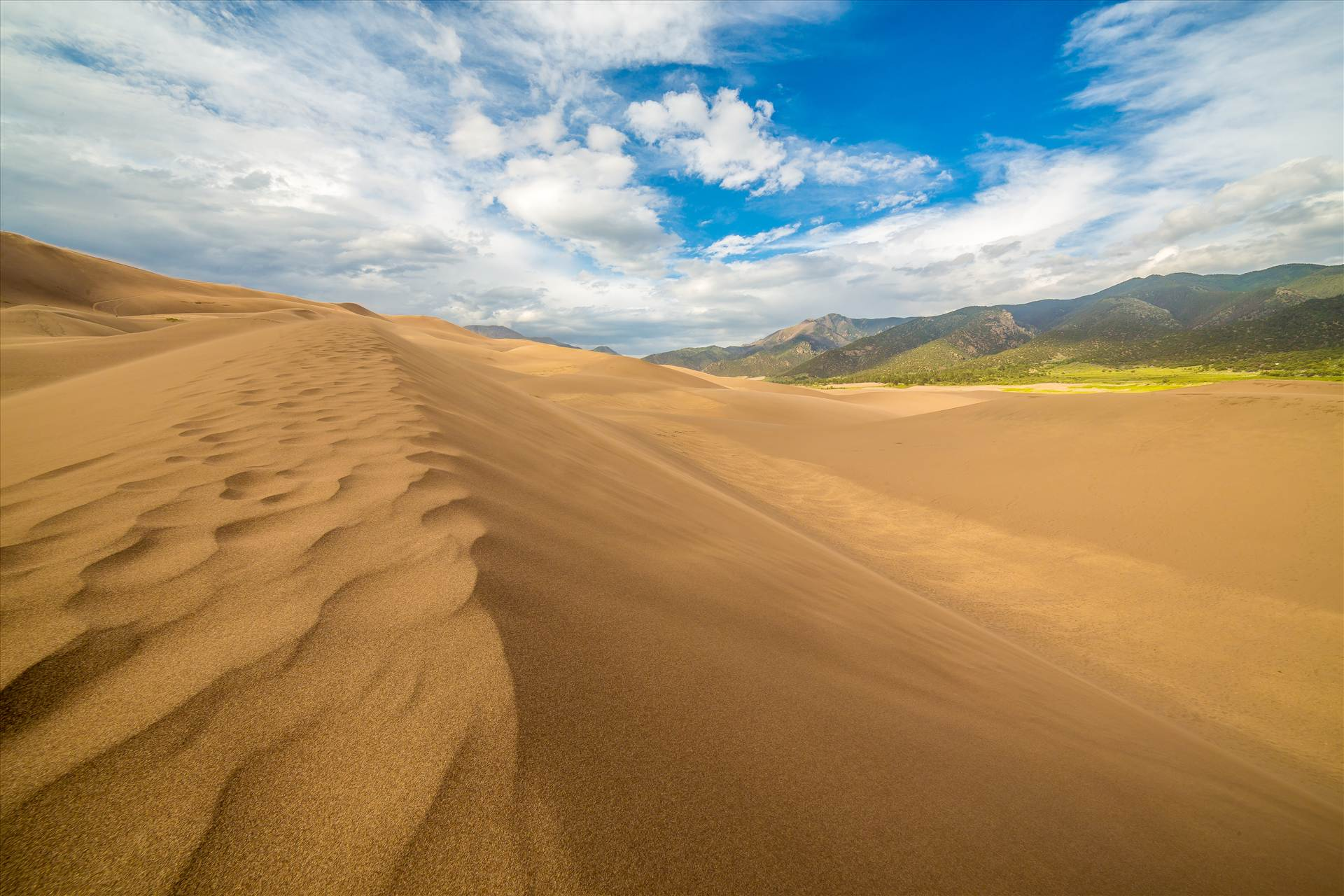 Great Sand Dunes 4 -  by D Scott Smith