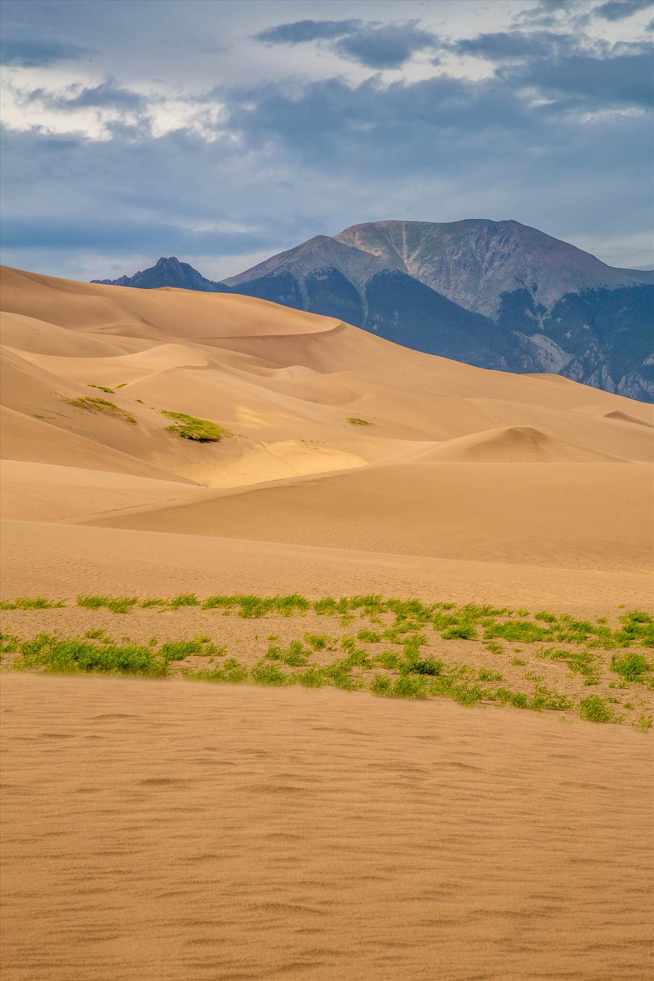 Great Sand Dunes 10 -  by D Scott Smith