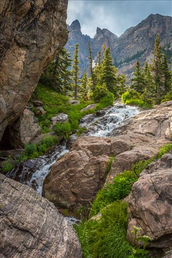 Bear Lake Trail 3 by D Scott Smith