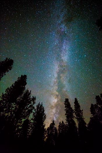 Leadville Starry Sky - Another beautiful view of the milky way from our campsite at Turquoise Lake, Leadville Colorado.