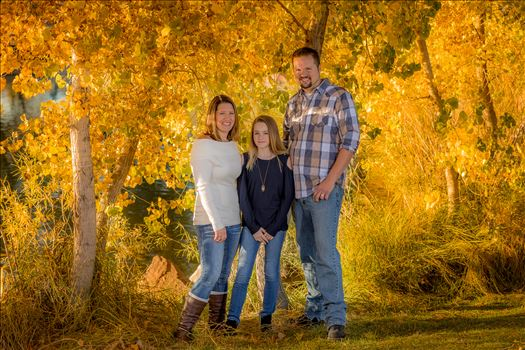 Wick Family Second Batch 12 -