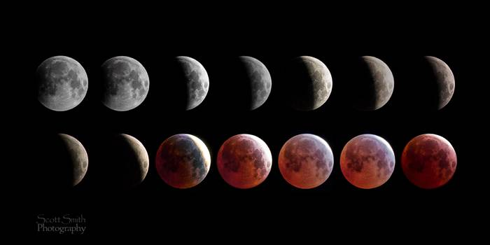 April 4 2015 Eclipse Collage - A collage of 14 images from the spring 2015 lunar eclipse, showing the different phases of the moon.