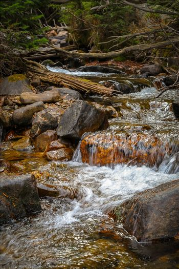 Near Alberta Falls, Rocky Mountain National Park by D Scott Smith