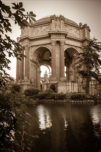 Palace of Fine Arts Sepia by D Scott Smith