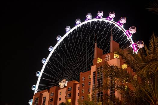 Vegas Observation Wheel by D Scott Smith