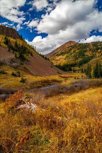 Washington Gulch by D Scott Smith