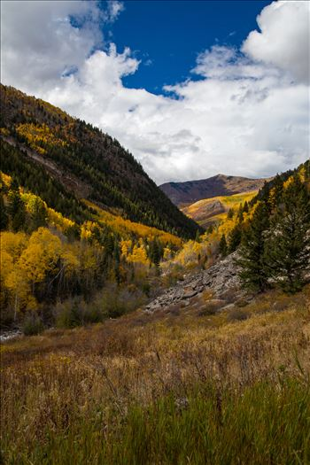 Snowmass Wilderness Area No 3 by D Scott Smith