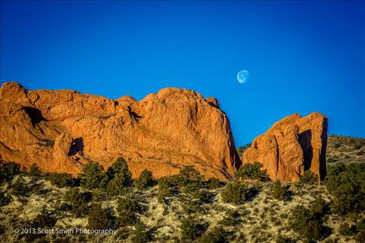 Garden of the Gods by D Scott Smith