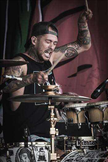 Denver Warped Tour 2015 21 by D Scott Smith