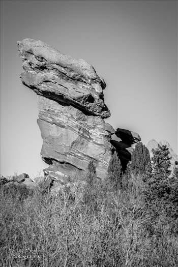 Garden of the Gods - Feature by D Scott Smith