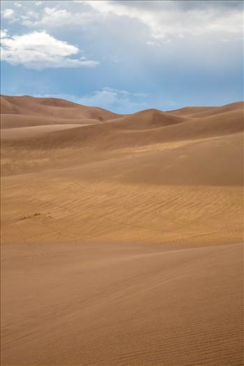 Great Sand Dunes 7 by D Scott Smith