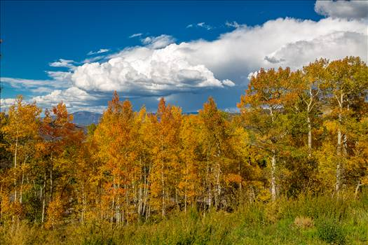 Hiking near Snowmass by D Scott Smith