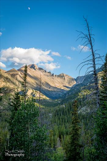 Bear Lake Trail 7 -