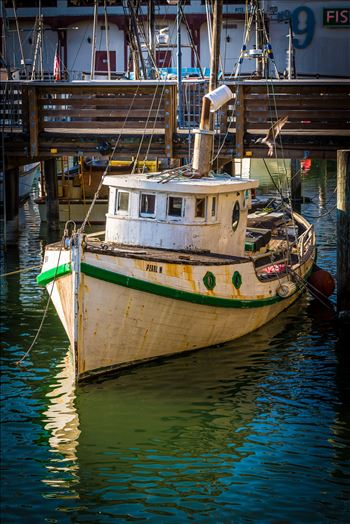 Boat at San Francisco's Pier 39 by D Scott Smith
