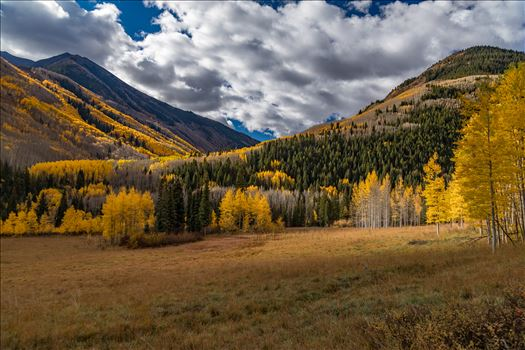Fall in Aspen Snowmass Wilderness Area No 1 -