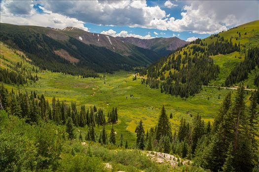 Independence Pass in Summer by D Scott Smith