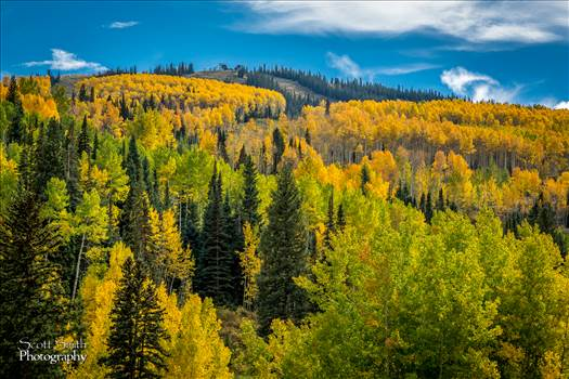Aspen Snowmass Area - Beautiful fall Colorado colors found near Aspen, Snowmass, and Independence pass.