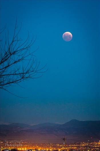 Lunar Eclipse, April 4 2015 8 by D Scott Smith
