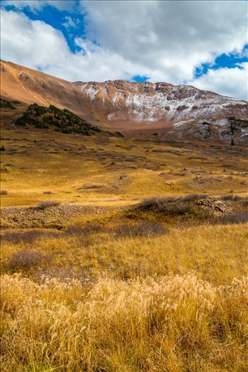 Snow and Grasses at Mount Baldy Wilderness by D Scott Smith