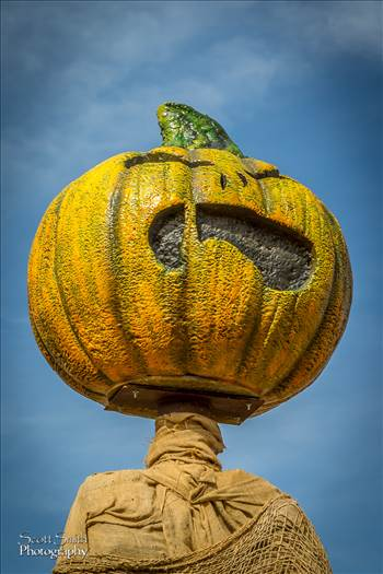 Scary Pumpkin Figure by D Scott Smith